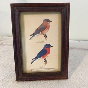 Vintage Small Wooden Framed Retro Bluebirds Art